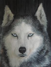 D thewolf cv