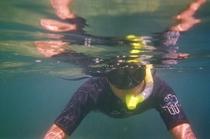 Snorkling cv