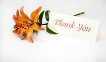 Istock thank you flower resized cv