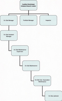 Org chart cv