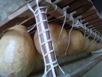 Copy of balaphon gourds cv