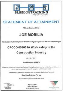 Work safely cv