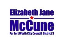 Mccunedistrict3 cv