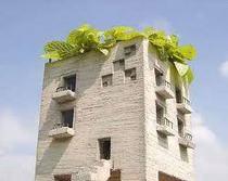 Rooftop cv