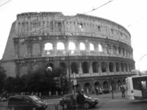 Coliseum cv