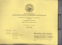 Srs certificate cv