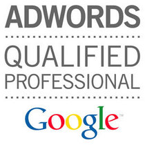 Adwords certified large cv