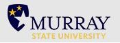 Msu logo cv