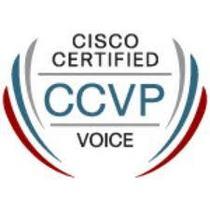 Ccvp cv