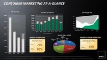 Mnc marketing account overview cv