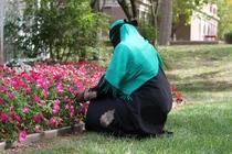 Hijab cv