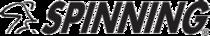 Header spinning logo cv