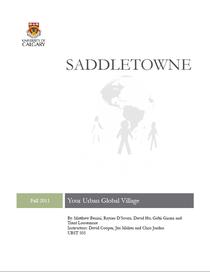 Saddletowne img cv