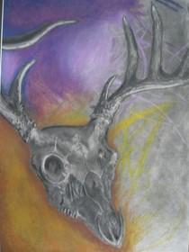 Forrest deer head cv