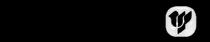 Logo4 cv
