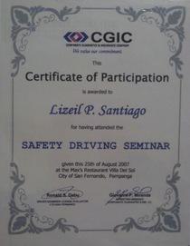 Driving cert cv