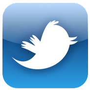 Twitter icon cv