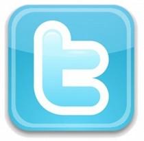 Twitter logo 300x293 cv
