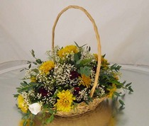 Basket arrangment cv
