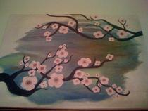 Cherryblossom  cv
