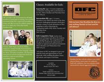 Brochure template cv