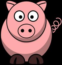 Pig cv
