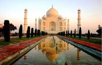 India cv