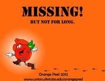 Orangepeelflier1 copy cv