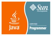 Java cv