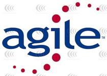 Agile cv