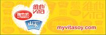 2011 branding campaign cv