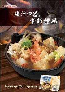 Frozen tofu poster cv