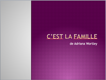 Cest last famille screen shot cv