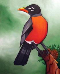 American robin cv