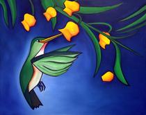 Rufus hummingbird cv