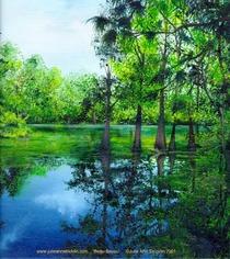 Beau bayou cv
