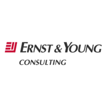Ernst  young consulting cv