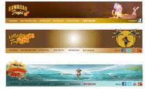 Web banner redesign cv
