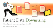 Todd laytham articles data downsizing cover cv