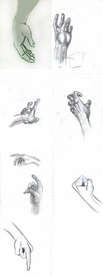 Realistic hands cv