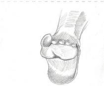Foot 2 cv