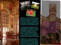 Brochure copy cv