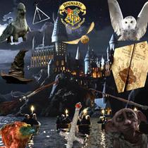 Harry potter cv