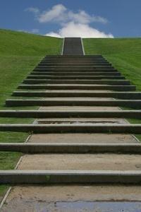Steps cv