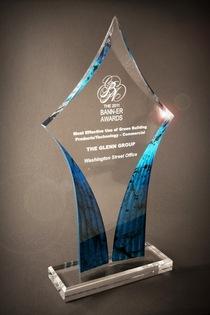 Banner award 2011 cv