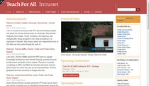 Tfall intranet homepage screenshot cv