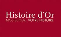 Logo histoire or cv
