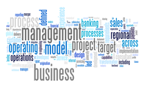 Cv full functional aug 2012 wordle cv