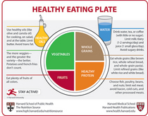 Healthy eating plate 460 cv