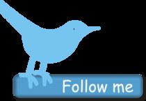 Follow0 cv